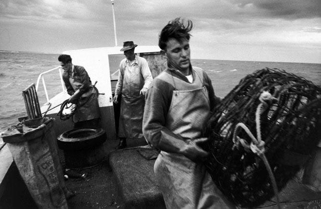 Cray fishermen, Lancelin, Western Australia – 1963