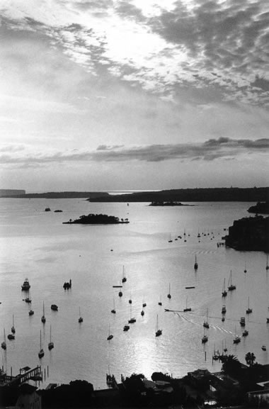 Morning sun over Elizabeth Bay – 1991