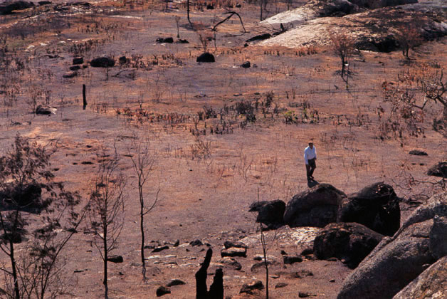 Fred Williams in burnt landscape, Victoria – 1969