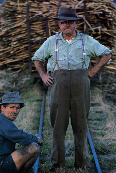 Sugar cane grower, Toby Wilson, Murwillumbah, New South Wales – 1966