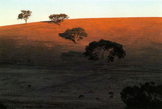 Evening landscape, Gundagai, New South Wales – 1987