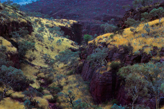 Mount Nameless Gorge, the Pilbara, Western Australia – 1985