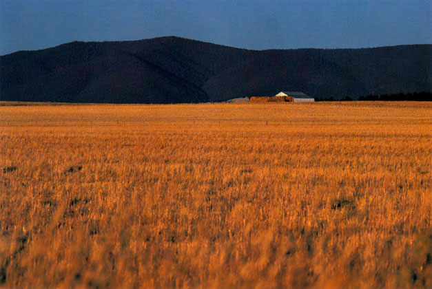 Bathurst landscape, New South Wales – 1987